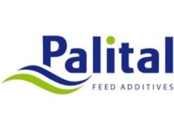 Palital